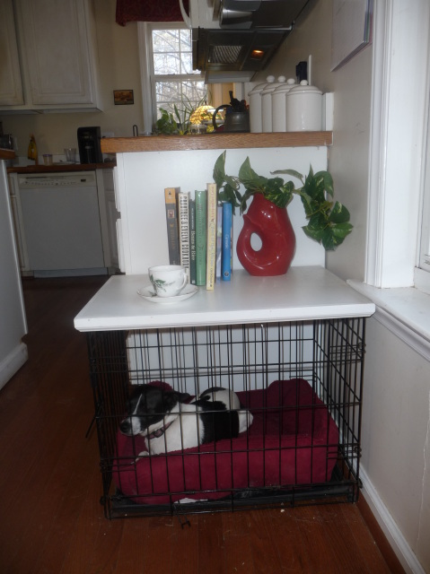 Dog Crate Table Top